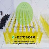 Seed Oil Refined