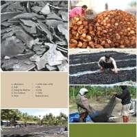 椰子壳木炭