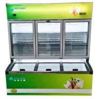 Chiller Freezer