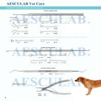 Dental Scalers For Cats And Dogs