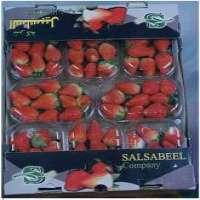 Strawberry Squash
