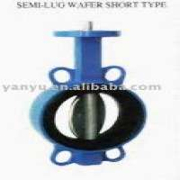Butterfly Valves Casting