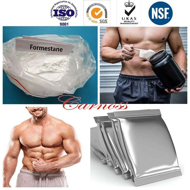 Muscle Building Steroids Lentaron Anesthetic Anodyne 566-48-3 Formestane Aromatizing For Breast Cancer