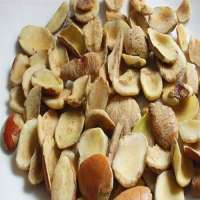 Irvingia Gabonensis Seeds