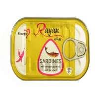 Bulk Moroccan Sardines
