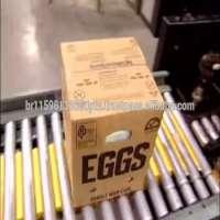 白色被轰击的鸡蛋