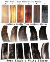 Water Buffalo Horn Hello Optical Plates