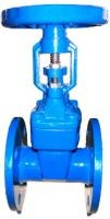 DUCTILE IRON RISING STEM GATE VALVE BOLTED BONNET