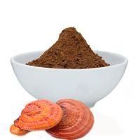 Ganoderma Mushroom