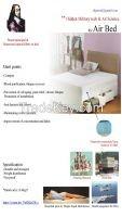 Pascal Air Bed and Mattress